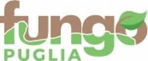 Fungo Puglia scarl