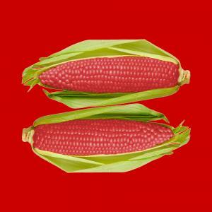 Stop OGM in Italia: vittoria dei consumatori e della biodiversita'
