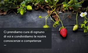 Biobottega - Moncalieri
