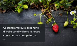 Biobottega - Novara