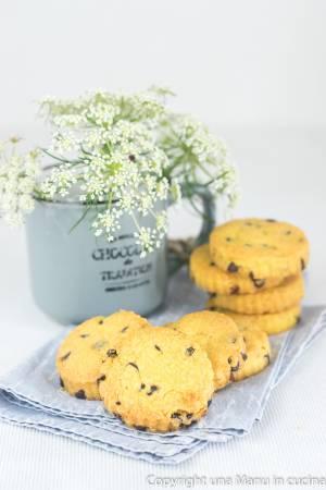 Biscotti senza glutine con farina di riso e cioccolato