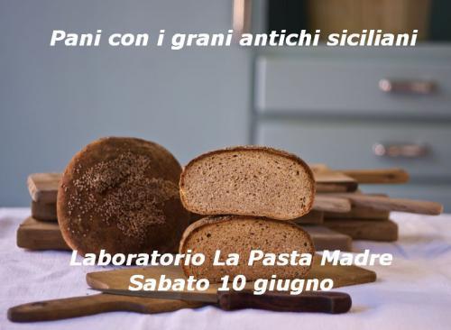 Pani con i grani antichi siciliani