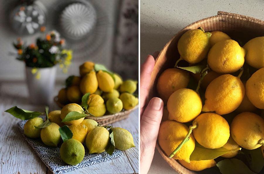 AG limoni x2